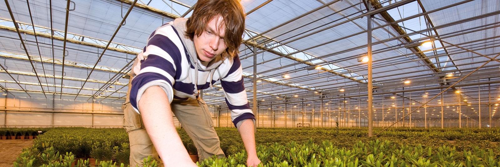 land-tuinbouw